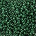 Picture of Opaque Forest Green Seed Bead #411H / Size 11<br />Approximately 25 ~        Grams