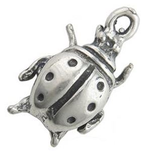 Picture of Sterling Silver Machine Cast Lady Bug Charm 13x7mm