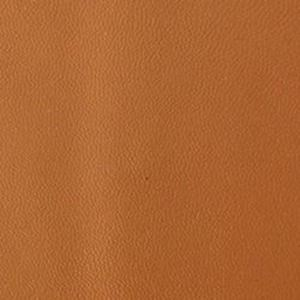 Picture of Natural Napa Leather 5x10 inchl