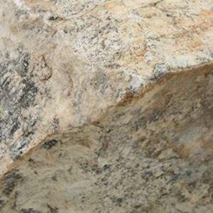 Picture of Rough Fishrock Dendrite