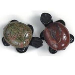 Picture of Fetish 2 Tone Gemstone, Assorted  Drilled Turtle, 18x30mm