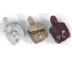 Picture of Assorted Drilled Turtle 14x22mm