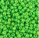 Picture of Opaque Calypso Green Seed Bead #411E / Size 11<br />Approximately 25 ~        Grams