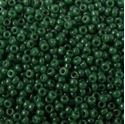 Picture of Opaque Forest Green Seed Bead #411H / Size 15<br />Approximately 25 ~        Grams