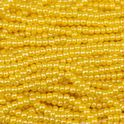 Picture of Opaque Dark Yellow Seed Bead #12