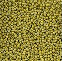 Picture of Size 11 Japanese Seed Beads, Semi-Glazed Rinbow Lemongrass (#2630F), ~ Approximately 25 Grams