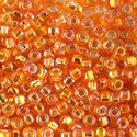 Picture of Silverlined Orange Aurora Borealis Seed Beads #637 / Size 6<br ~        />Approximately 25 Grams