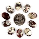 Picture of 13x18mm Wild Horse Cab