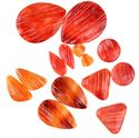 Picture of Assorted Red Orange Spiny Oyster Cabochons